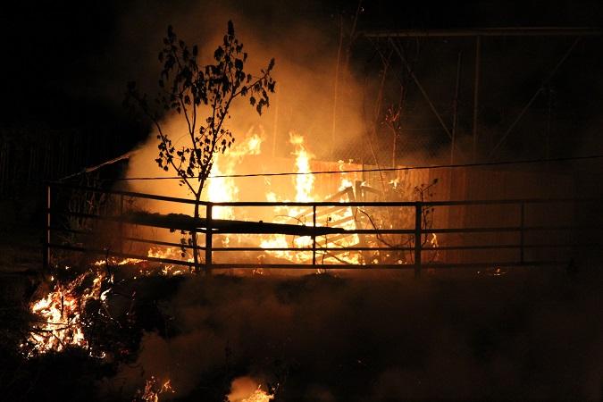 50 incendios forestales contabiliza Protección Civil Estatal en lo que va del año