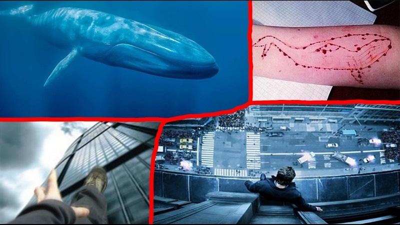 La Ballena Azul, el juego viral que termina con la muerte de sus participantes