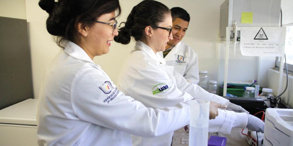 UAA busca alternativas terapéuticas para sanar heridas en córnea por quemadura química