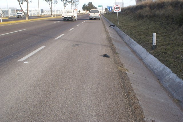 AVISO: Bloquearán carretera 45 sur federal en Ags este medio día