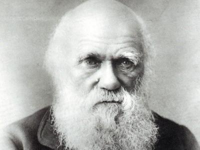 Una predicción de Darwin se cumple… con matices