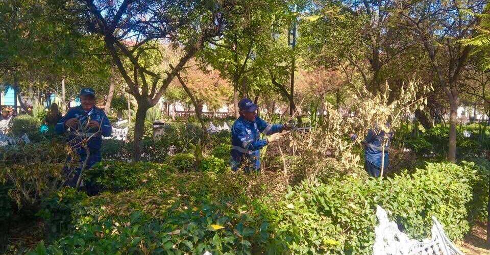 MuniAgs cuida parques y jardines del frío