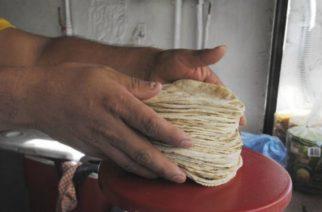 Podría haber un nuevo aumento al precio de las tortillas a fin de año