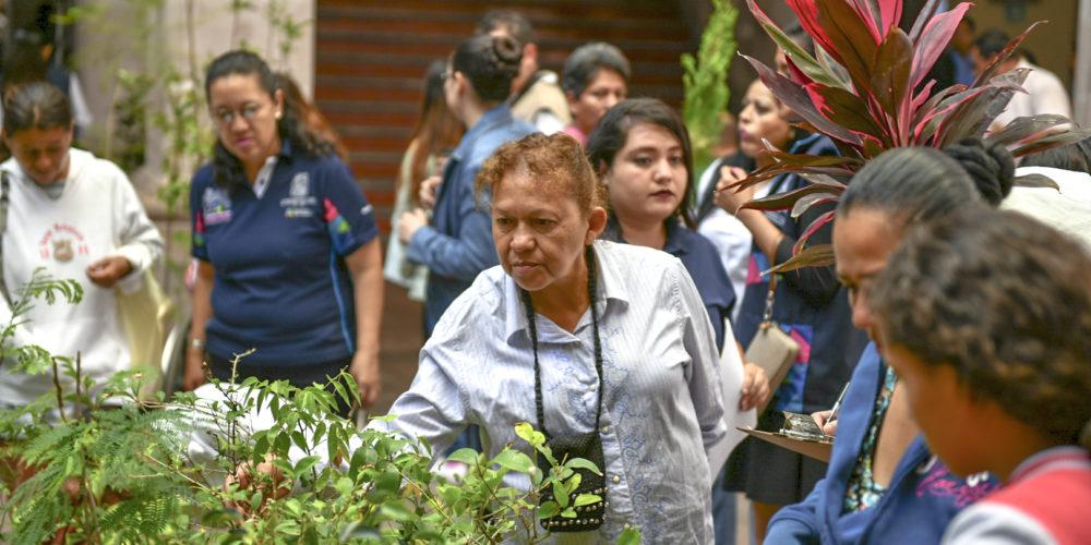 De julio a octubre se plantarán 30 mil árboles en toda la ciudad