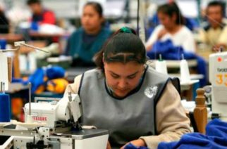Checa el pronóstico de la OIT sobre el empleo en el segundo semestre del año
