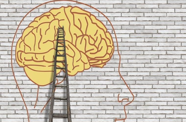 El estrés puede reducir el tamaño del cerebro