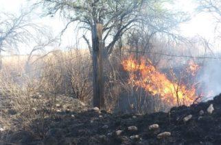 Hasta 15 incendios diarios se reportan en Jesús María