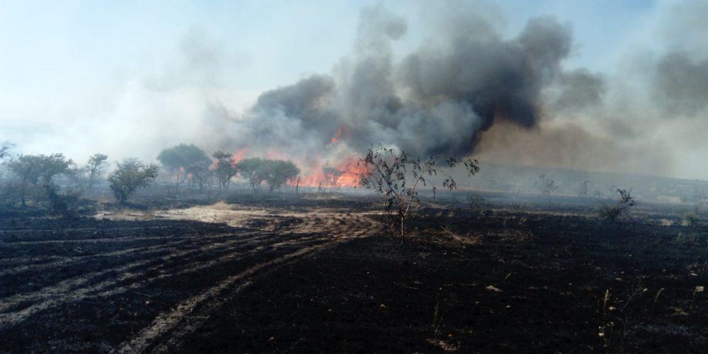 Fuerte incendio comenzó en Jalisco y se extendió a Aguascalientes