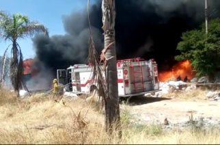 Se realizan acciones preventivas contra incendios: Semadesu