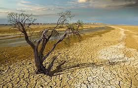 Solo el 5% de captación de lluvias en el año en Aguascalientes