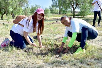 Municipio de Aguascalientes e IP reforestaron el Parque México