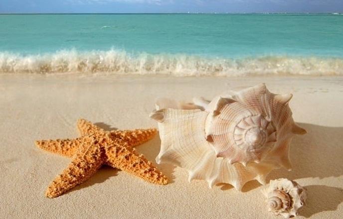 Pasar tiempo en la playa y el campo, relaja al cerebro