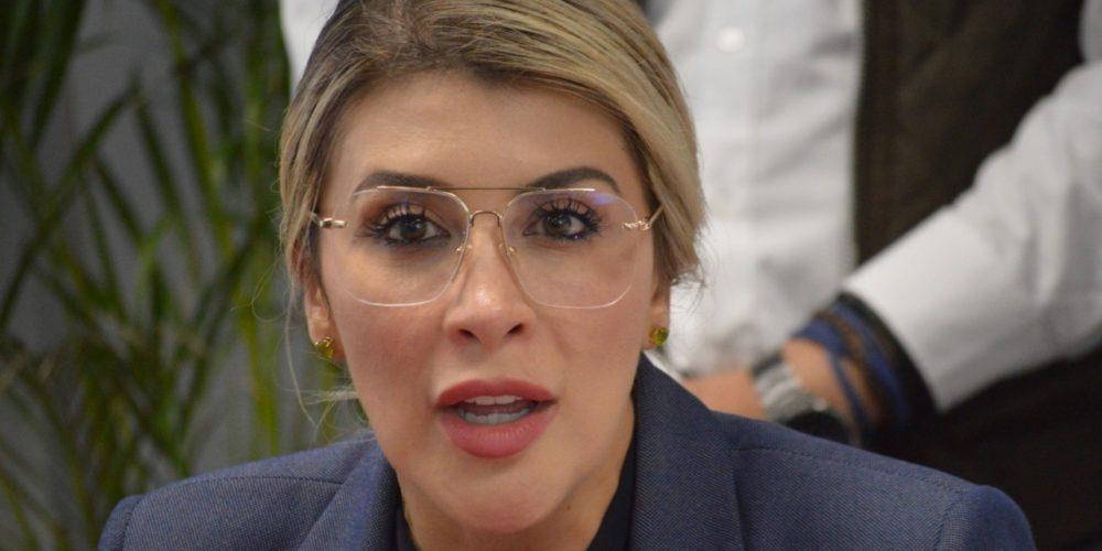 """""""Reducciones presupuestales muestran  falta de sensibilidad en Morena"""": Guel"""
