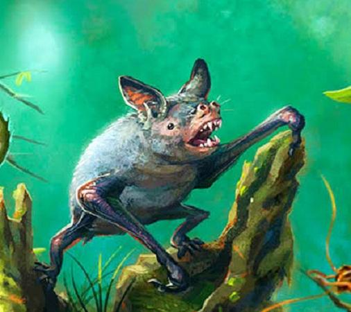 Descubren vestigios de un murciélago gigante en Nueva Zelanda