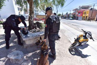Policía municipal supera las 74 mil detenciones en 2019