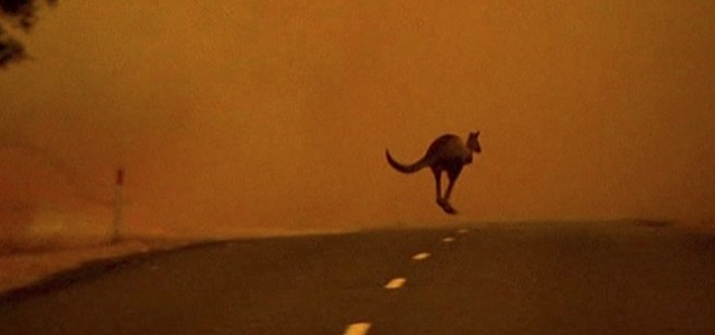 El calor ya supera los 40° en Australia