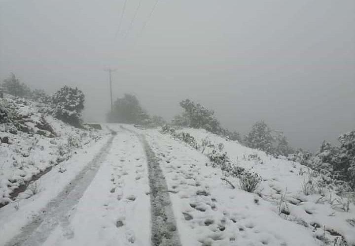 Reportan caída de nieve en Sombrerete, Zacatecas