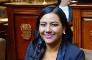Diputada panista coincide con alcaldesa Jiménez: Tema de seguridad es tarea de los 3 niveles