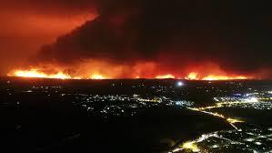 Incendios en Australia han dejado 17 muertos