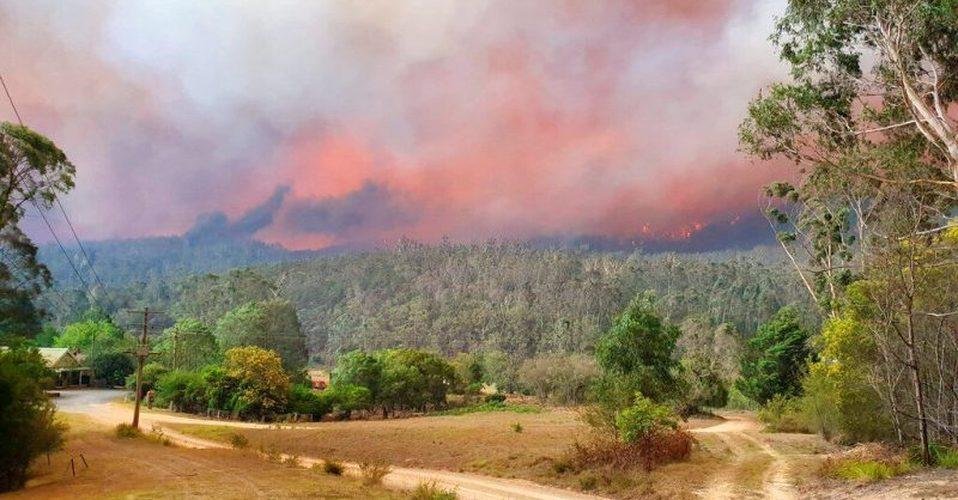 Pronostican fuertes lluvias en zonas afectadas por incendios en Australia