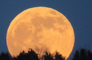 Así lució  la Luna del Lobo, la primera del 2020 (FOTOS)