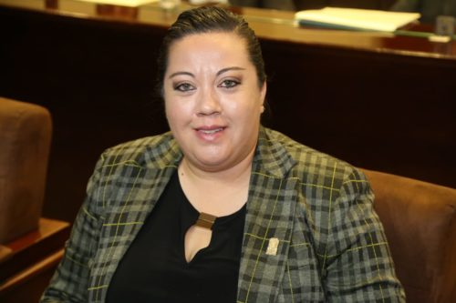 Dice diputada que en febrero se abrirá convocatoria para el Osfags