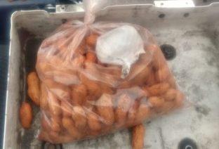 Sujeto escondía droga en unos cacahuates en Aguascalientes
