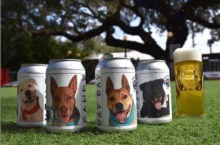 Promueven adopción de perros mediante latas de cerveza