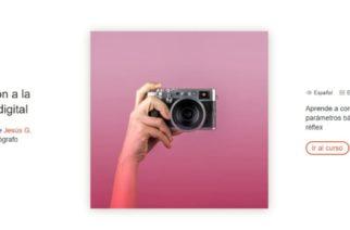 Domestika ofrece cursos gratuitos de creatividad online