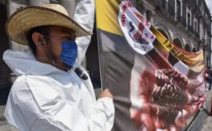 Lanza guía OIT para prevenir Covid-19 en zonas agrícolas de Latinoamérica