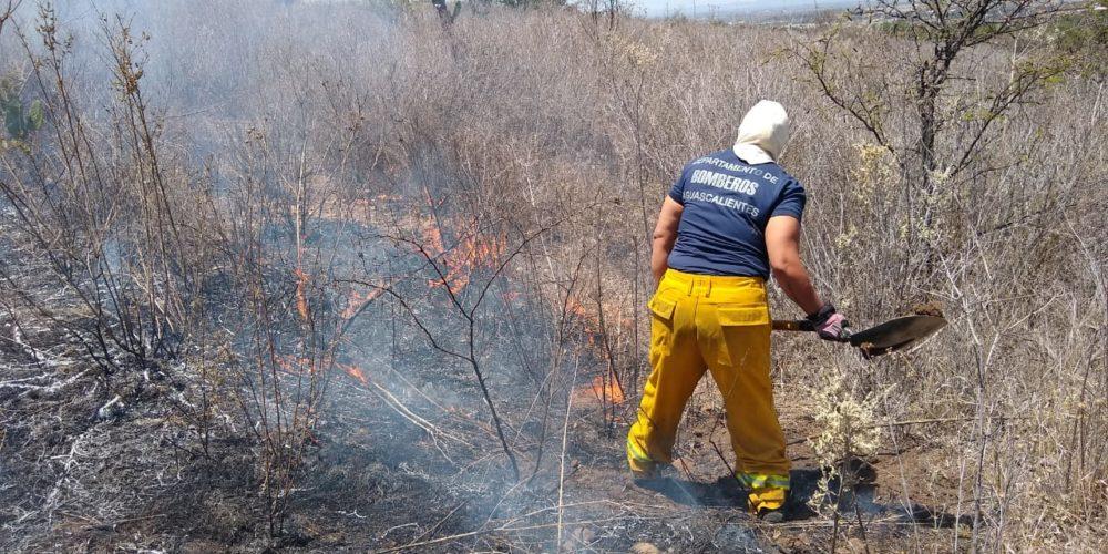 Bomberos municipales sofocan incendios de pasto seco