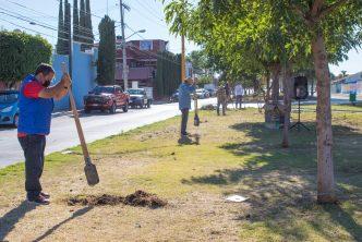 Realizan labores de reforestación en la capital