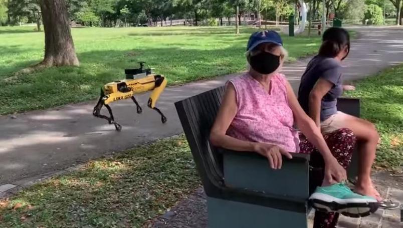 (Video) Perro robot vigila que personas guarden su sana distancia