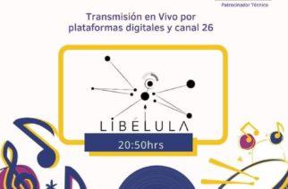 Grupo Libélula en el Despensatón 2020