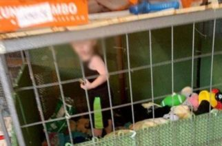 Rescatan a niño que vivía en una jaula rodeado de 600 animales