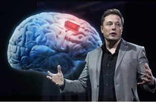 Neuralink, el proyecto que busca conectar nuestros cerebros a una computadora
