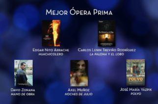 El cineasta aguascalentense Axel Muñoz nominado al Premio Ariel
