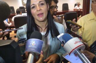 """""""El PRI no puede caer más bajo de la última elección"""": Armendáriz"""