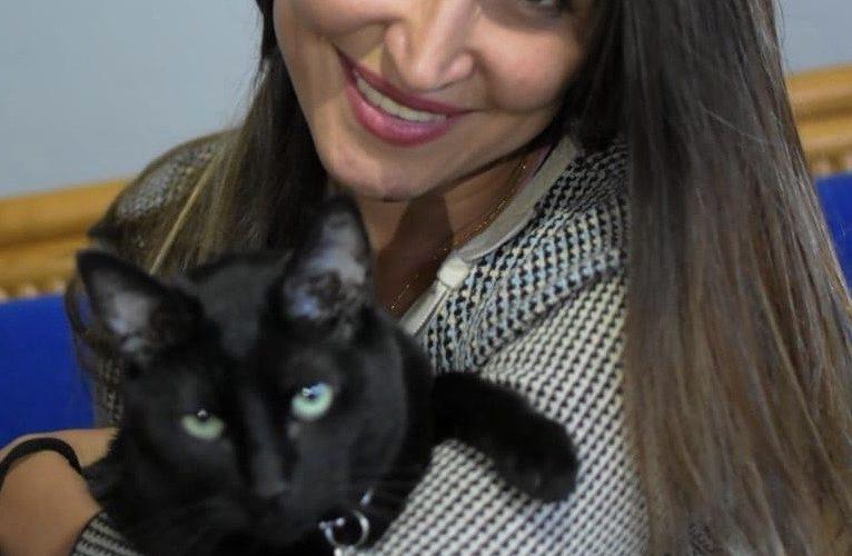 Piden cuidar gatos negros en Aguascalientes para que no los usen en rituales