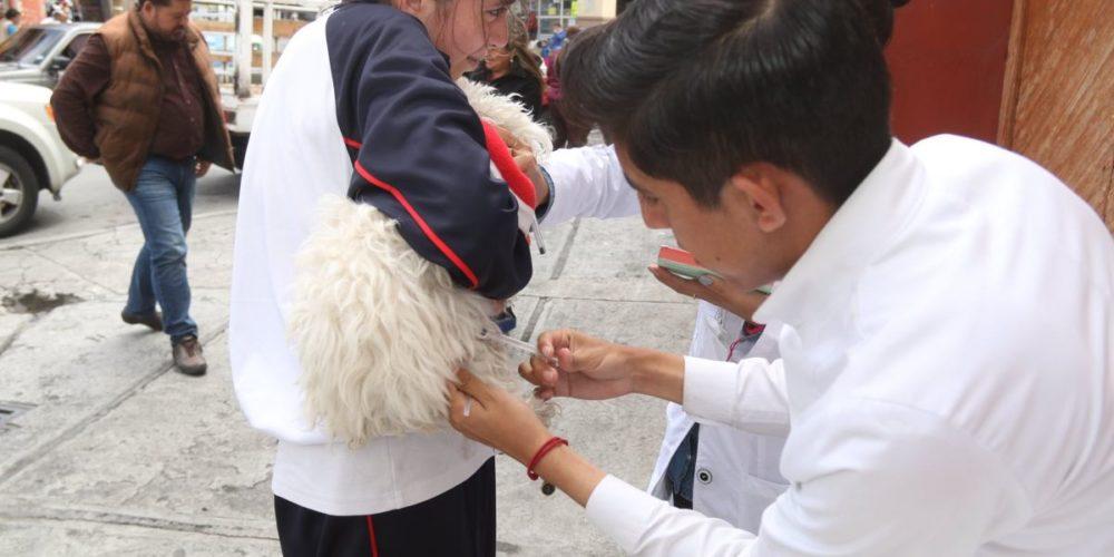 Impostores se hacen pasar por vacunadores e inyectan agua a las mascotas