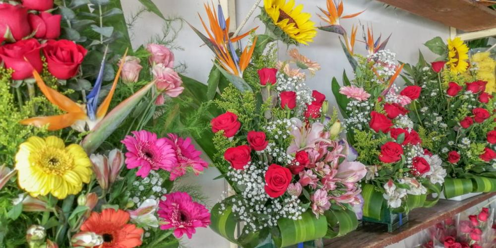 Floristas esperan bajas ventas durante Día de Muertos