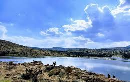 Alrededor de 8 mil productores temporaleros afectados por sequía