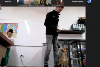 Se gradúa quinta generación de adiestramiento canino