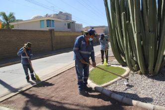 Se intensifica mantenimiento en áreas verdes de la capital