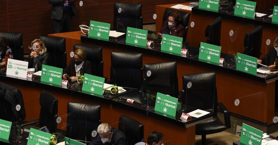 Senado aprueba despenalización de la marihuana