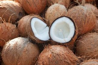 Por crisis, escuela permite que alumnos paguen inscripción ¡con cocos!