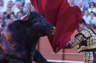 Unesco rechaza la tauromaquia como Patrimonio Cultural de la Humanidad