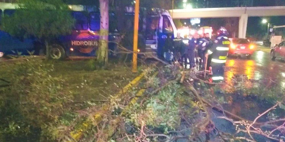 Veloz conductor choca camión de personal contra un árbol en el Morelos