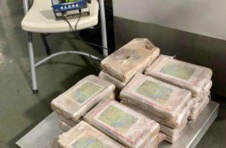 Marina y Guardia Nacional decomisan 29 kilos de cocaína provenientes de Colombia