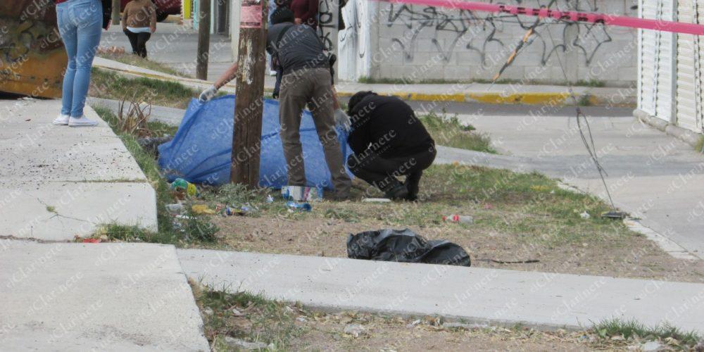 Identifican a anciano arrollado y muerto en La Soledad